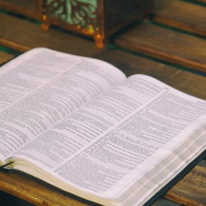 Slow and Steady Bible Study