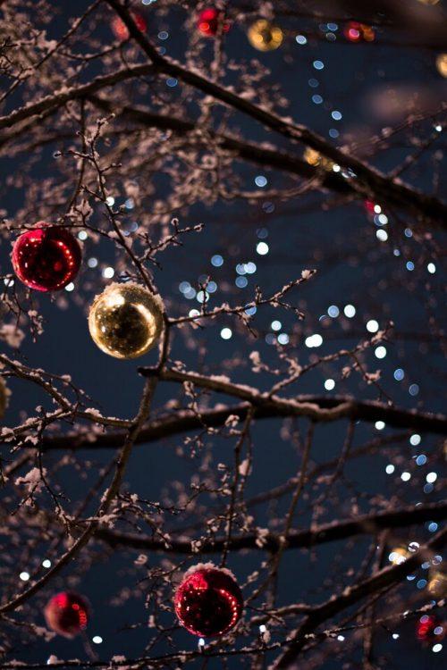 Christmas Memories Small Group- Tuesday