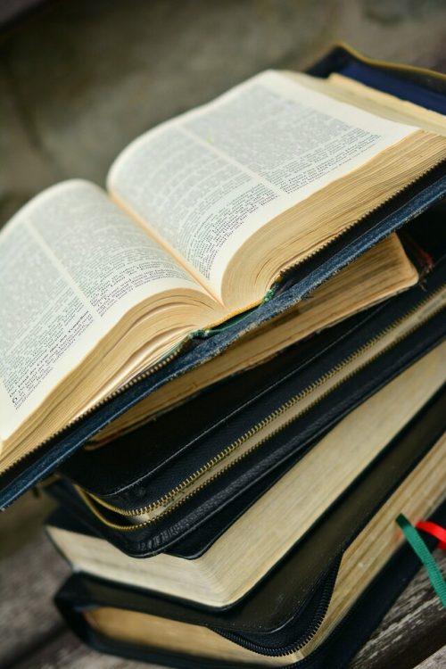 Bible Moths